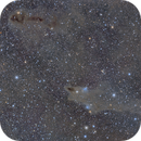 LDN1235 - The Shark Nebula,                                tgigl