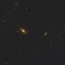 M81 & M82 taken with WilliamOpticsZ61,                                Chris Schaad