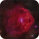 SH2-264 - Orions Head,                                Fritz