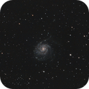 M101 Pinwheel Galaxy,                                andythilo
