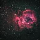 Rosette Nebula,                                Thomas Ammann