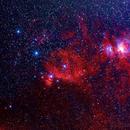 Orion's Belt and Sword (using Rokinon 135mm f/2.0),                                Gilbert Ikezaki