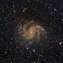 NGC6949 Fireworks Galaxy,                                niteman1946