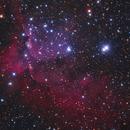 The Wizard Nebula - LRGB,                                Teagan Grable