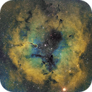 IC1396 in hubble-palette,                                Janos Barabas