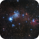 NGC2264 Christmas Tree Cluster and Cone Nebula,                                Kevin Parker