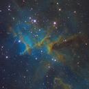 IC1805 SHO,                                Christopher Gomez