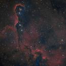 IC1396 Elephants Trunk,                                helios