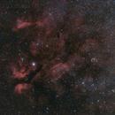 Gamma Cygni and Crescent nebula,                                J.J.Losada