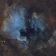 North America and Pelican nebulae (modified Hubble palette),                                meeus
