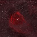 Flying Bat Nebula in HOO,                                Steven Christensen