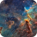 IC1805,                                Jose Mtanous