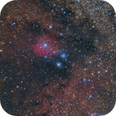 IC1283-84 NGC6589-90 Bambi's necklace,                                MakikoSugimura
