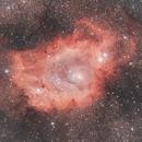 Lagoon Nebula,                                Alessandro Iannacci