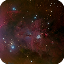 NGC 1999,                                Miles Zhou