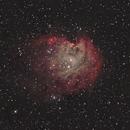 NGC2174,                                wsg