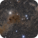 Dusty Ain in the Hyades -- Sh2-239 to NGC 1555,                                Jarrett Trezzo