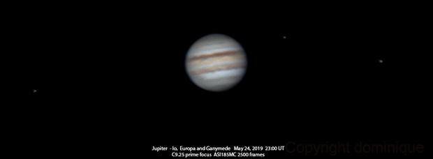The first Jupiter of the season,                                Dominique Callant