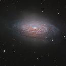 NGC 3521 and its satellites,                                José Joaquín Pérez