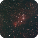 news from window astronomer........NGC 2264,                                Frank Lothar Unger