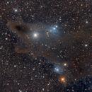 LDN 1235 called the Shark nebula,                                Riedl Rudolf
