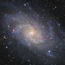 """M33 in Triangulum (TS ONTC 12"""" f/4 First Light),                                Nurinniska"""