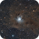 Iris Nebula NGC 7023,                                Chad Adrian