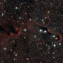 IC1396,                                Guillaume Rld