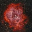 Rosette Nebula,                                mackiedlm