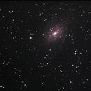 C101 Spiral Galaxy,                                Adel Kildeev