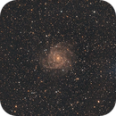 IC 342,                                Alessandro Curci