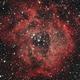 Rosette Nebula,                                Dainius Urbanavicius