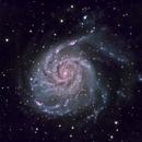 M101 - The Pinwheel Galaxy,                                Andrew Barton