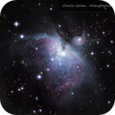 M42 Orion Nebula,                                cgoldeniv