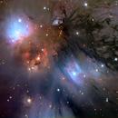 NASA APOD -> NGC 2170,                                Adam Block