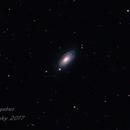 Sunflower Galaxy M63,                                Glenn Bargabus