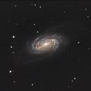 NGC2903 (LRGB),                                Nick's Astrophotography