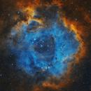 Rosette Nebula,                                Rodrigo González...