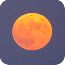 Airplane passes over full moon,                                Amir H. Abolfath