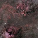 The Deneb - Sadr Region, constellation Cygnus (Swan),                                Vladimir Machek