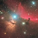 Horsehead Nebula,                                regis83
