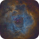 Rosette in Narrowband (Hubble Palette) ,                                Stacy Spear