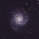 Phantom Galaxy M74,                                Chad Adrian