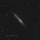 NGC55 Whale Galaxy,                                Warren