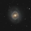 M95,                                Carsten Dosche