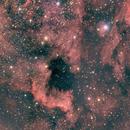 North American and Pelican Nebula,                                Michael Finan