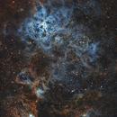 Tarantula Nebula (NSW Australia),                                Jeff A Brown (pullaqua)