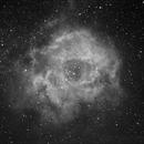 NGC2237-Ha,                                Siemens Lin