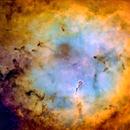Elephant Trunk Nebula,                                dts350z