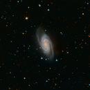 NGC2903,                                Sean McCully
